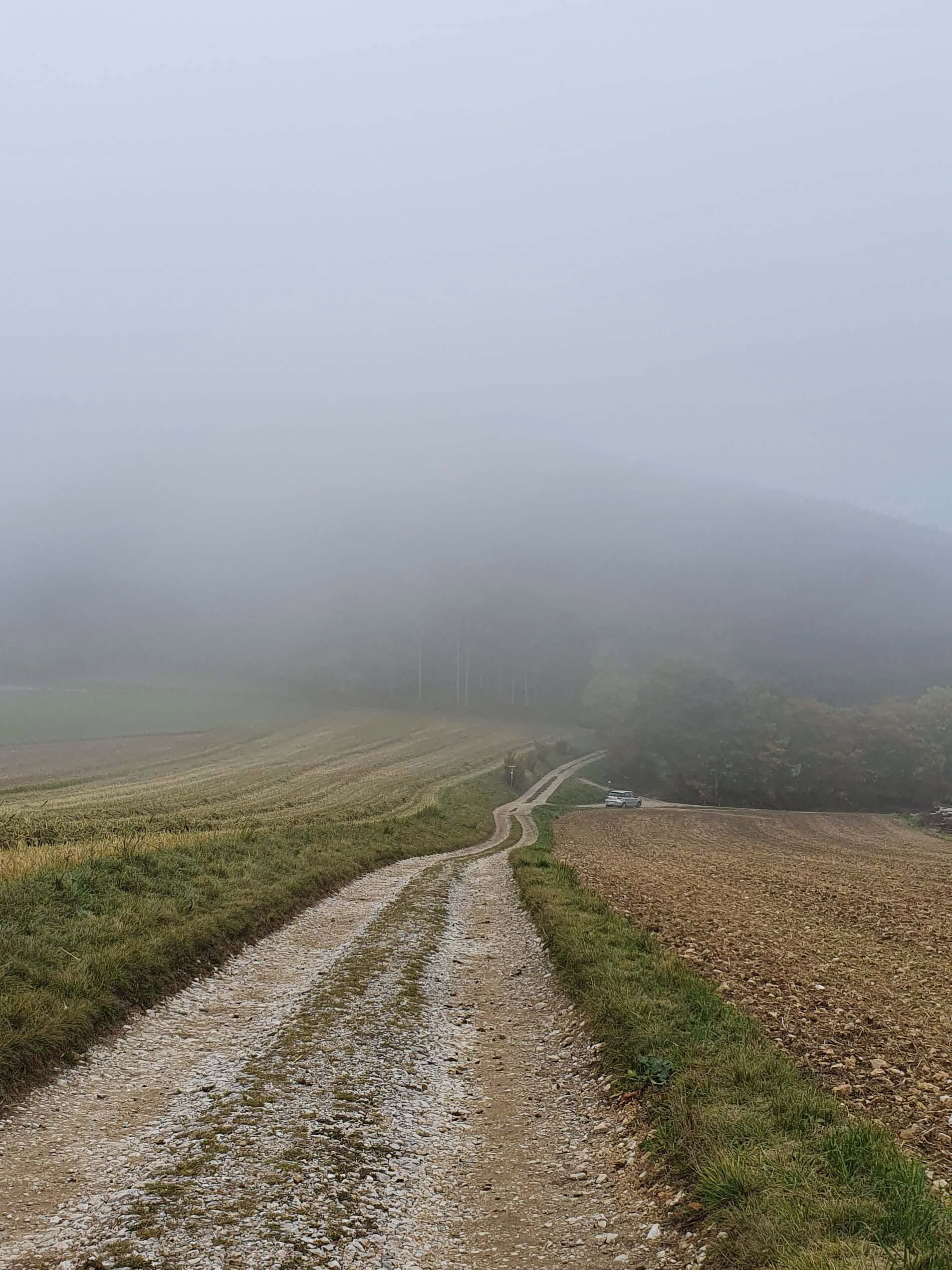 Fabulousky Studio Photography About Me_Fog_Austria